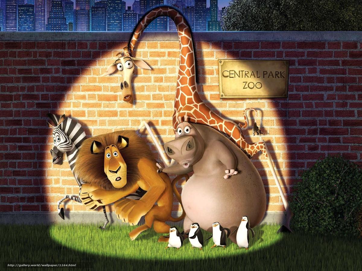 Hq madagaskar, kreslené zvířata, 1600x1200 obrázek / filmy