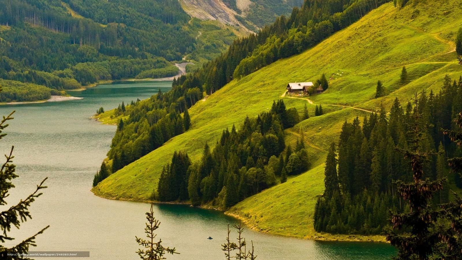 Doğa, manzara, dağlar, tepeler, plajlar, bitkiler, ağaçlar, orman