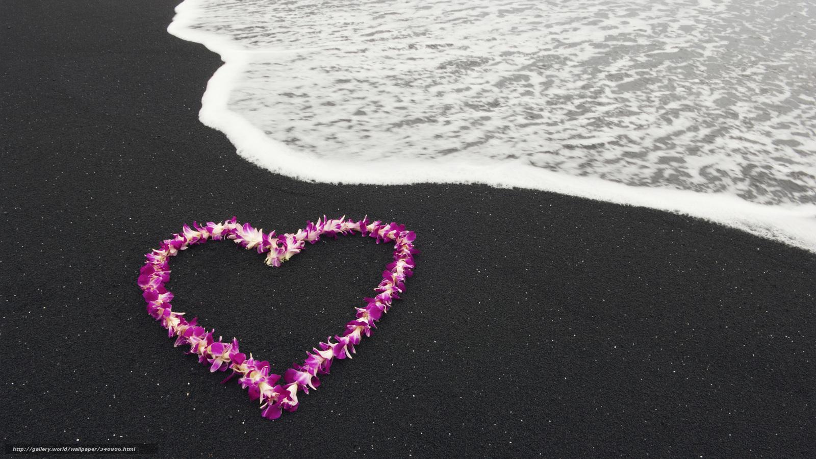 Сердце природа пейзаж цветы любовь