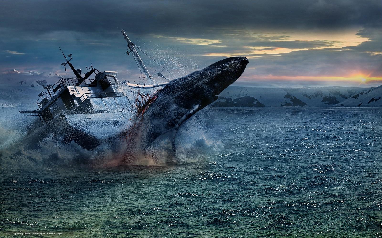синий кит и лодка