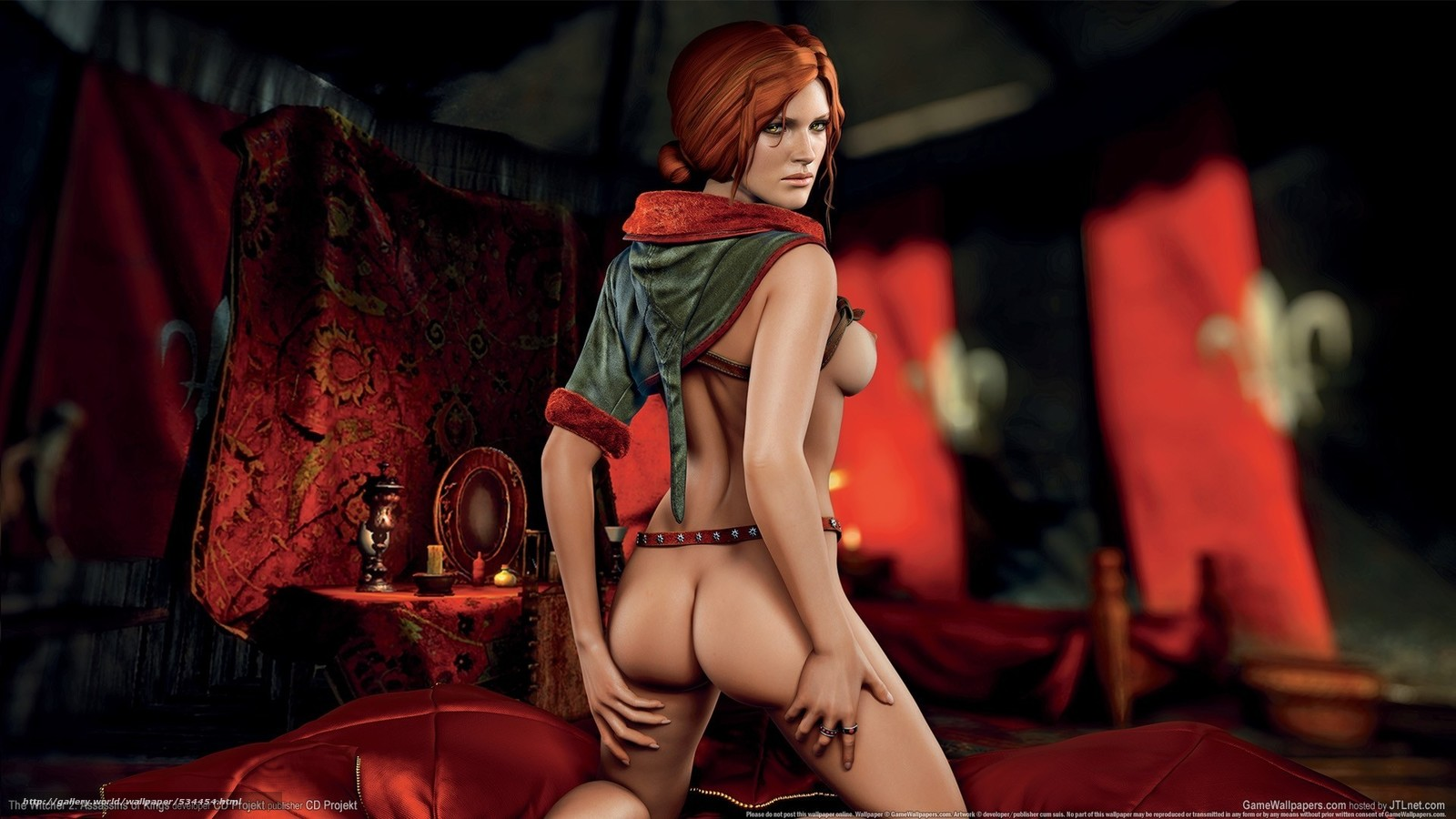 Sex in witcher pornos photo