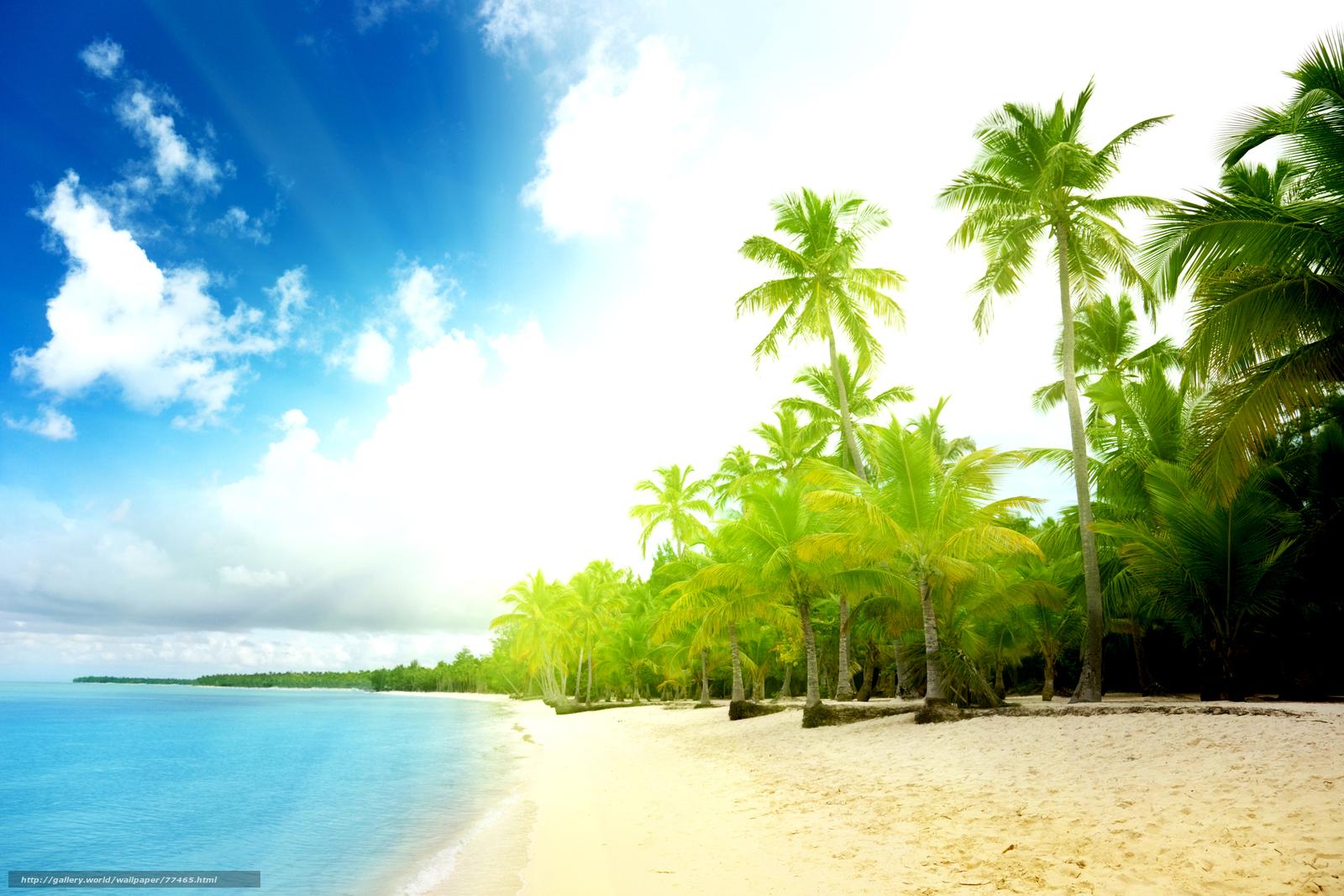 Вода море океан лето берег волны