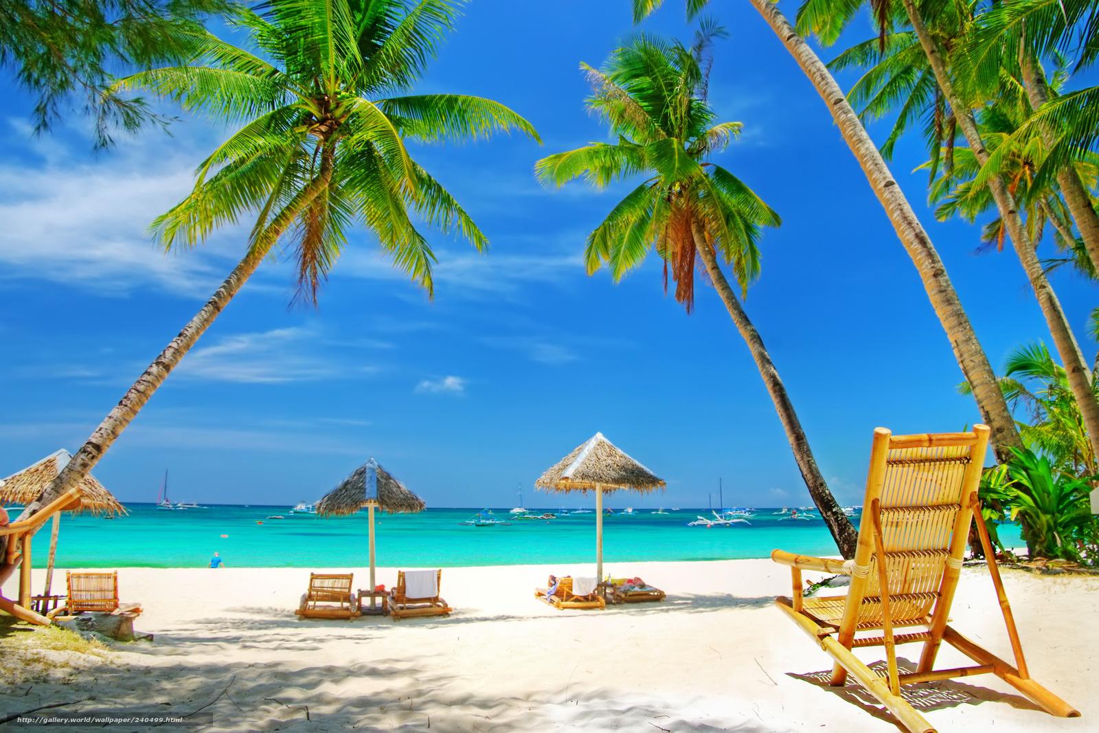 Картинки пляжей море пальмы