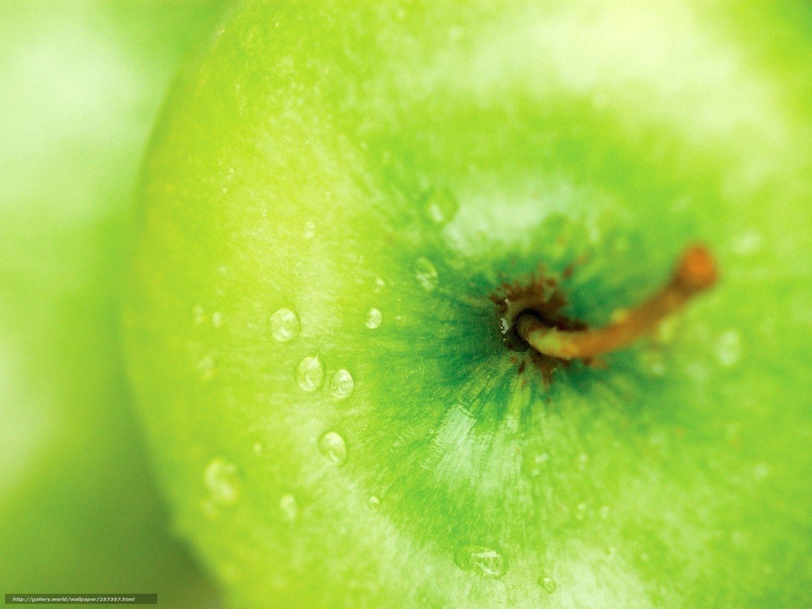 Яблоки зеленые фото