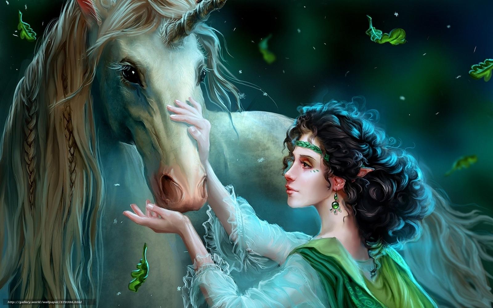 Descargar gratis elfo,  unicornio,  noche Fondos de escritorio en la resolucin 1920x1200 — imagen №370396