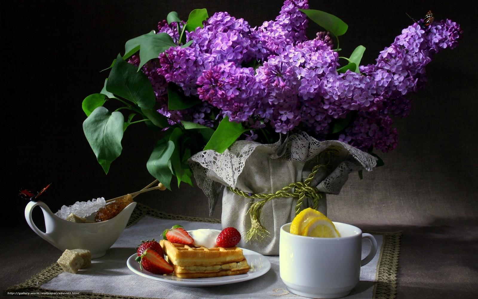 Скачать обои натюрморт, цветы, сирень, бабочки бесплатно для рабочего стола в разрешении 1680x1050 — картинка №404485