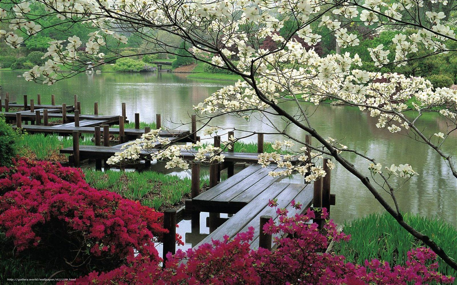 Jardin japonais for Jardin zen bureau