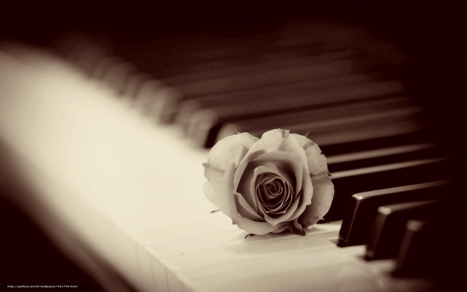 Картинки пианино и цветы 5