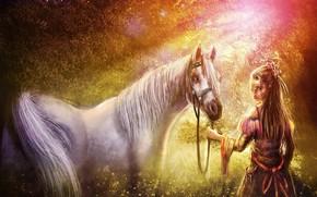 Скачать обои для рабочего стола лес, свет, конь, арт, лошадь, девушка