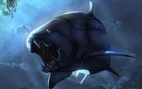 Количество скачиваний картинки: 114 раз(а). Обои Хищная рыба.